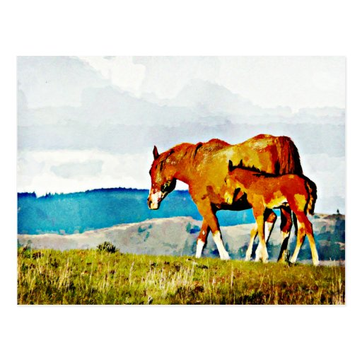 Mare with Foal on the Ridge Postcard