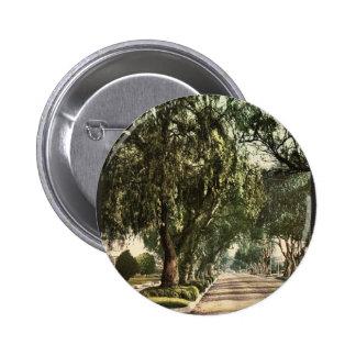 Marengo Avenue, Pasadena classic Photochrom Pins