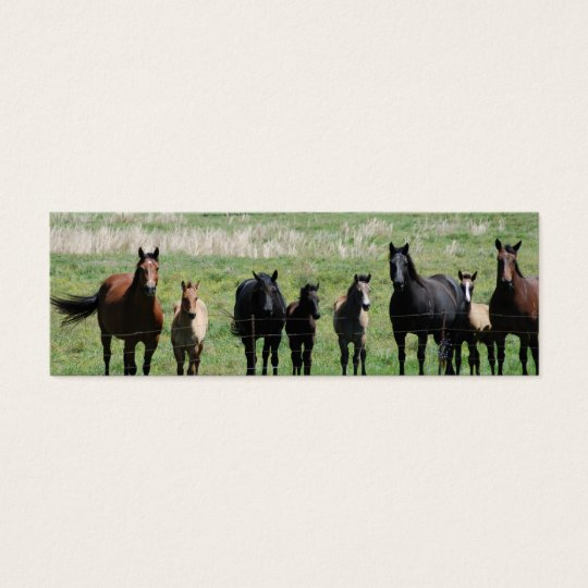 """Mares & Foals"" Bookmark Mini Business Card"