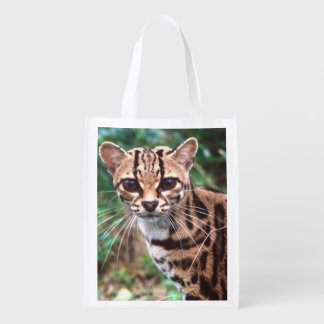 Margay, Leopardus wiedi, Native to Mexico into Grocery Bags