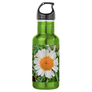 Marguerite 532 Ml Water Bottle