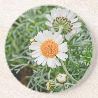 Marguerite Coasters