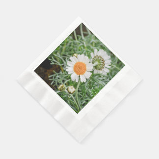 Marguerite Paper Napkins