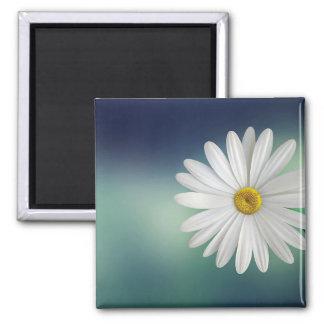 marguerite square magnet
