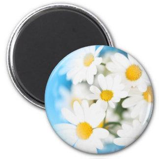 Marguerites 6 Cm Round Magnet