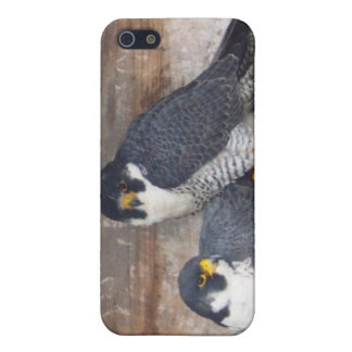 Mariah and Kaver Hard Shell Case for iPhone 4/4S iPhone 5/5S Cover