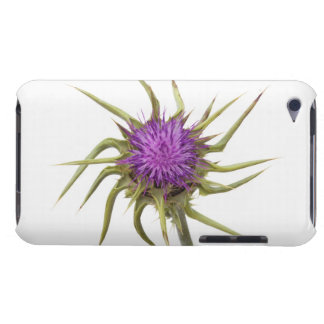 Marian thistle 2 barely there iPod cover