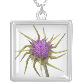 Marian thistle 2 silver plated necklace