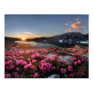 Marie Lakes Sunrise - John Muir Trail - Ansel Adam Postcard