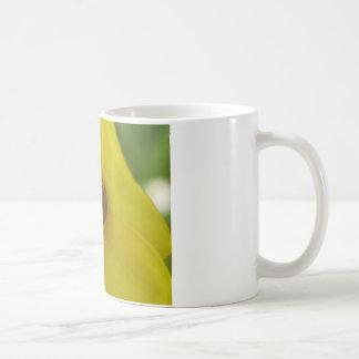 Marienkäfer Mugs