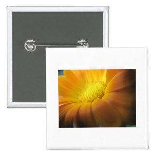 Marigold 15 Cm Square Badge