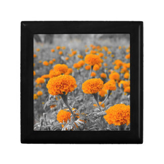 Marigold or Tagetes flowers Small Square Gift Box