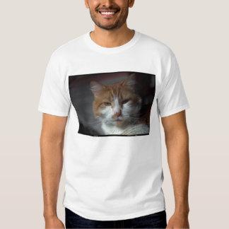 'Marigold' orange and white tabby cat Tee Shirt