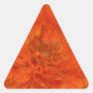 Marigold Triangle Sticker