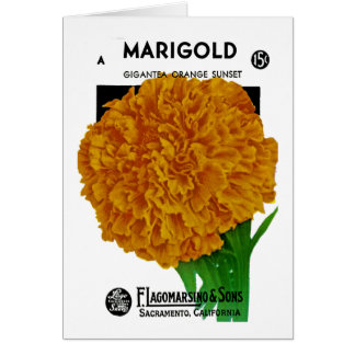 Marigold Vintage Seed Packet Greeting Card