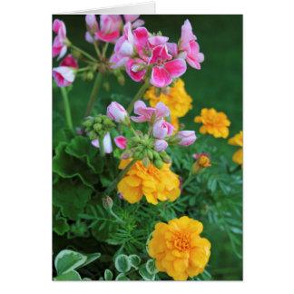 Marigolds and Geranium Card