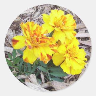 Marigolds Stickers
