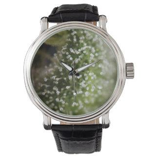 Marijuana trichomes 01 wrist watches