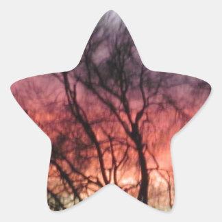 Marin Midwinter Sunset - Hot Colors Cold Landscape Star Sticker