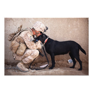 Marine and His Dog Photo