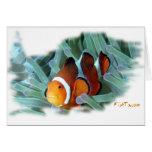 Marine Aquarium Fish by FishTs.com