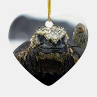 Marine iguana christmas ornament