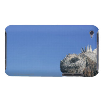 Marine Iguana iPod Touch Case-Mate Case