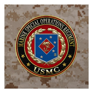 Marine Special Operations Regiment (MSOR) [3D] Poster