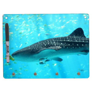 Marine Water Chic Stylish Cool Blue Whale Shark Dry Erase Board With Key Ring Holder