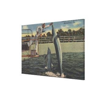 Marineland, Florida - View of Feeding Porpoises Canvas Print