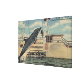 Marineland, Florida - View of Pudgy the Canvas Print
