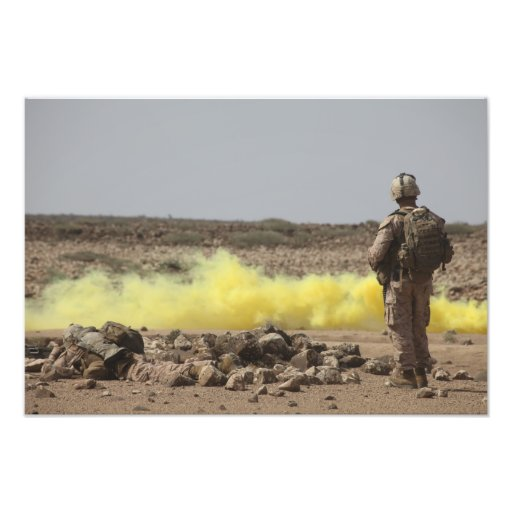 Marines provide security photographic print
