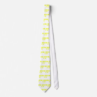 Maritime Safety Agency second region .png Tie