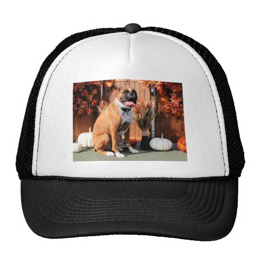 Marley - Boxer Photo-01 Hat