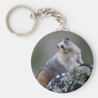 marmot basic round button key ring