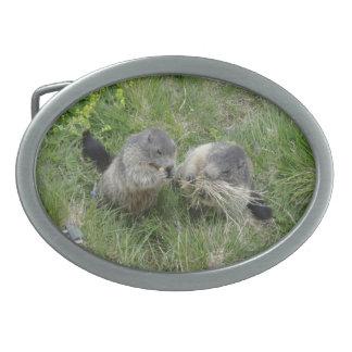 Marmot belt buckle