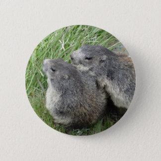 Marmot button