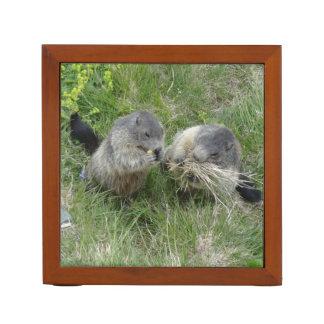 Marmot desk organizer