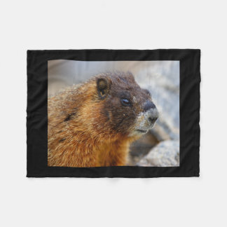marmot fleece blanket