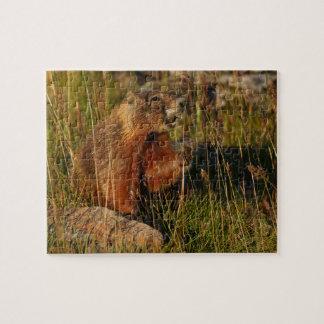marmot jigsaw puzzle
