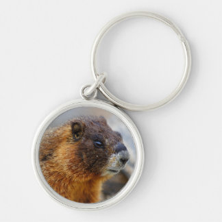 marmot Silver-Colored round key ring
