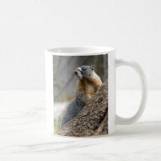 Marmot Meaning against a Rock Coffee Mug
