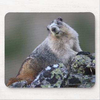 Marmot Mouse Mat