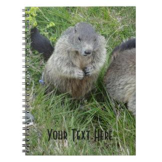Marmot notebook