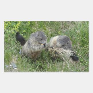 Marmot stickers