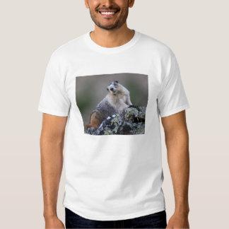 Marmot Tees