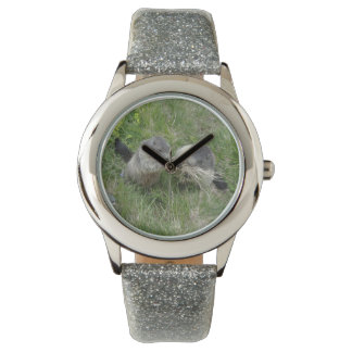 Marmot watches