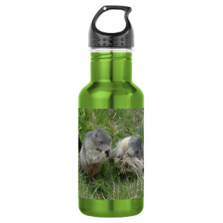 Marmots 532 Ml Water Bottle