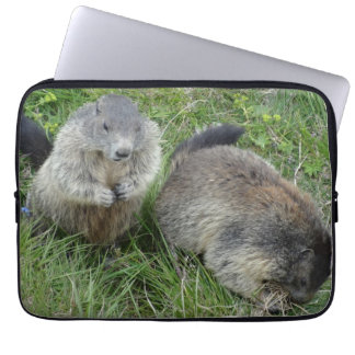 Marmots laptop sleeves