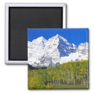 Maroon Bells with autumn aspen forest. Square Magnet